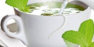 infusiones-de-stevia